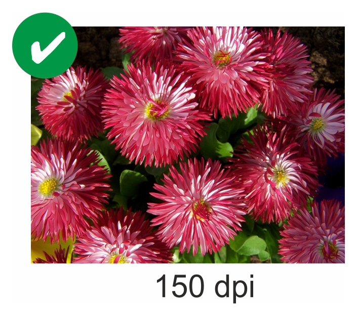 150DPI