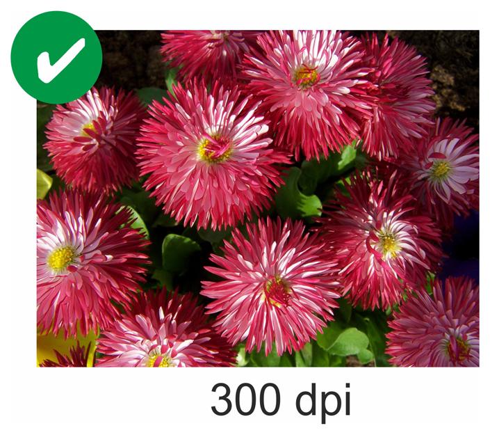 300DPI